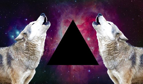cool, hispter, indie, photography, triangle, wolf