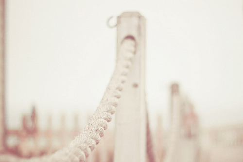 cute, joyhey, pastel, photography, vintage