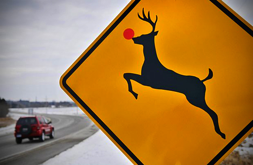 cute, red nose, reindeer, rudolph, sign
