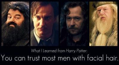 dumbledore, hagrid, harry, potter, remus