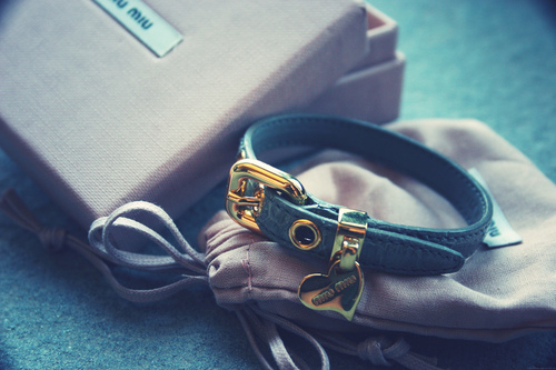 accessories, bracelet, cute, fashion, love, miu miu
