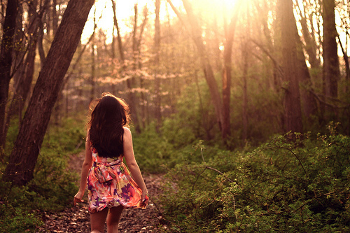 alone, dress, fashion, forest, girl, grass, nature, trees, woods