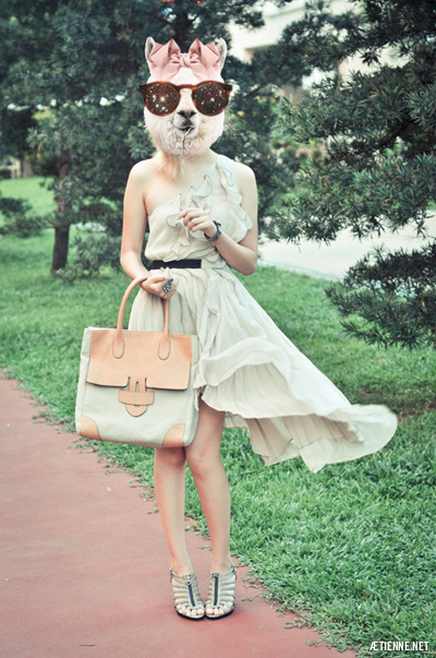 alpaca, bag, bow, dress, fashion