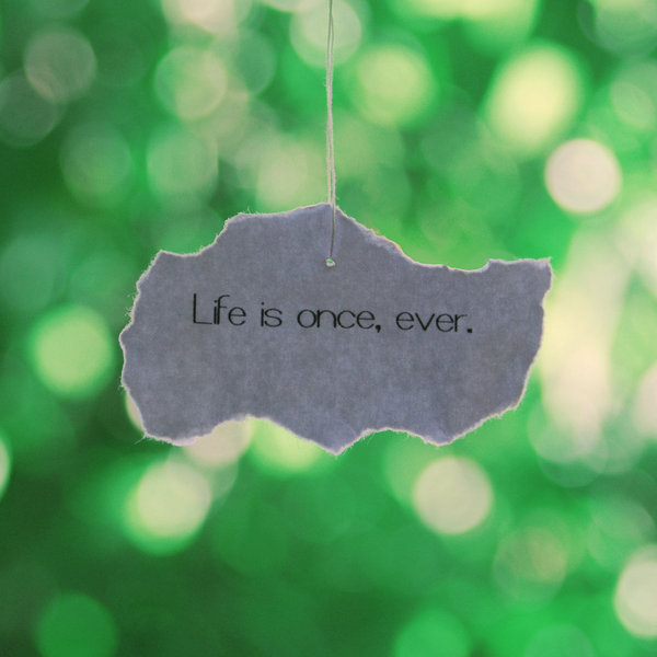 always, cute, ever, forever, hope, inspiration, life, live, once, quote, quotes, text, to the fullest