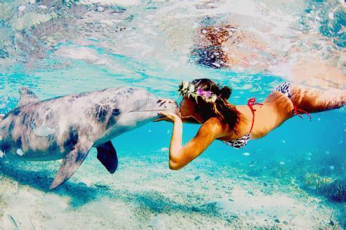 amazing, beach, beautiful, bikini, cool, cute, dolphin, fashion, flower, girl, hair, love, ocean, photography, pretty, sea, tan, water