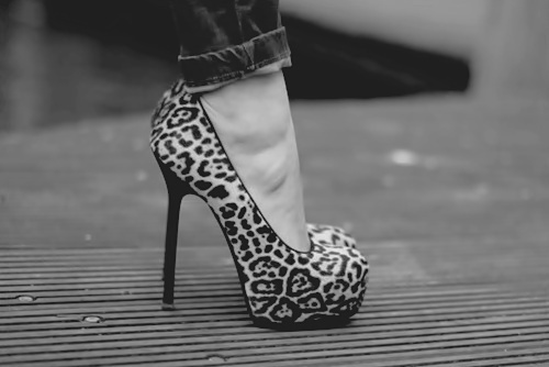 animal print, b&w, black and white, fashion, heel, heels, high heel, high heels, leopard, leopard print, leopard print shoe, leopard print shoes, shoe, shoes