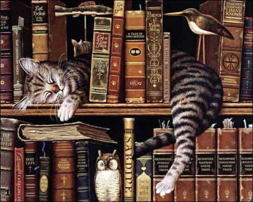 art, books, cats, illustration