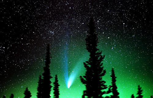aurora boreal, beautiful, cool, galaxy, lights, night, shooting star, sky, stars, tree