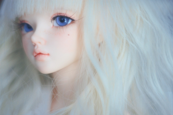 Ball Jointed Dolls 16