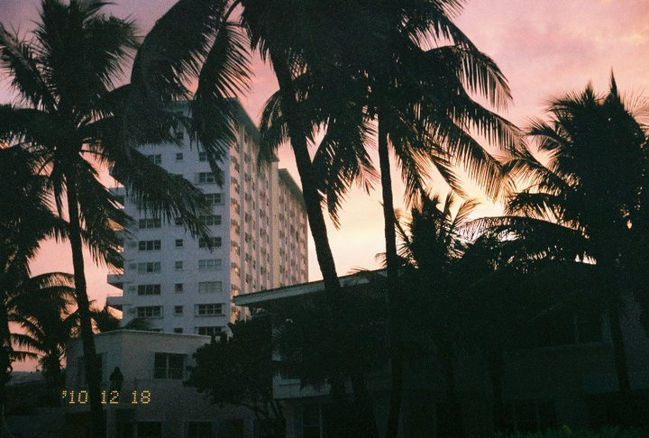 beach, disposable, film, florida, pretty