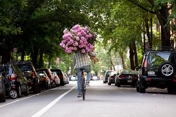 beautiful, bike, boy, cars, cute, flowers, love, pink, road, street, summer