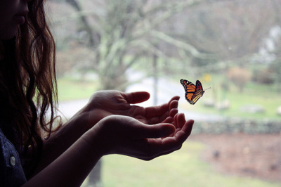 beautiful, black, butterfly, cute, hair, hands, monarch, orange, photography, pretty, tree, white