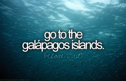 before i die, blog, blue, bucket list, galapagos