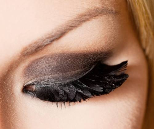black, brows, eyes, feathers, lashes, make up, shadows