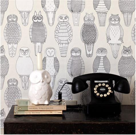 book, owl, owls, photography, room, telephone