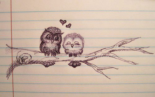 branch, drawing, love, notebook, owl
