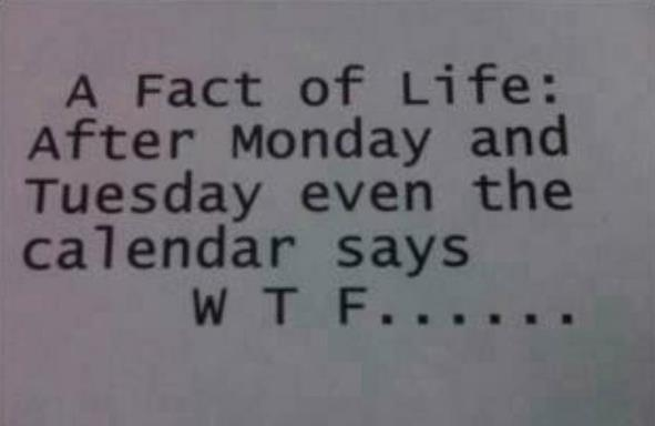 calendar, fact, funny, monday, quote