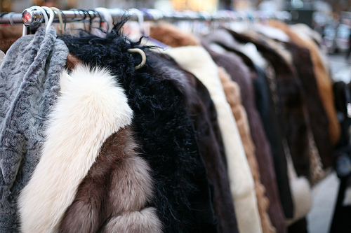 closet, fashion, fur, jacket
