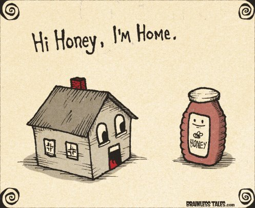 cute, funny, home, honey, lol