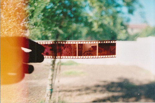 demhayerawsah, film, film roll, hand, outdoor, photo, photography, trees, vintage