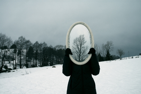 effect, mirror, nature, snow, tree, trees, winter