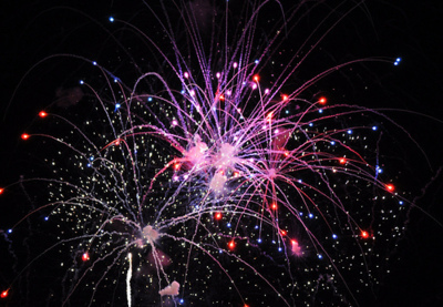fireworks, flowers, landscape, nature, photo