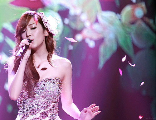 girls generation, jessica, sica, snsd