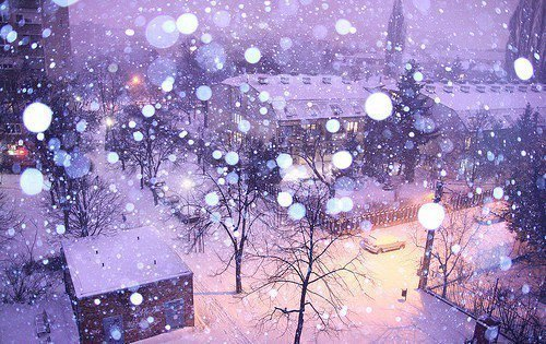 nature, pretty, snow, street, weather, winter