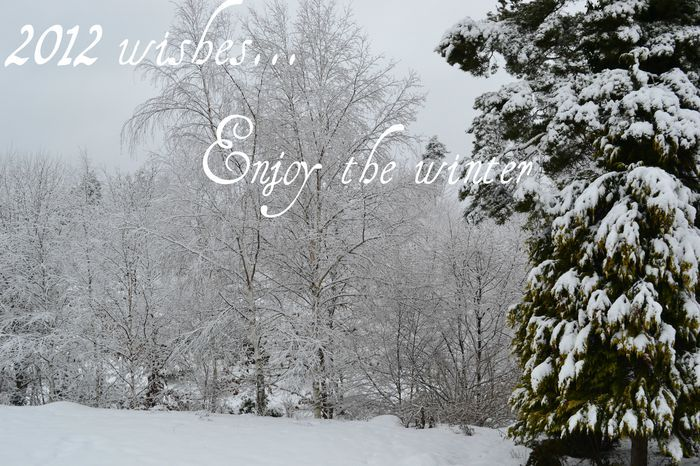 2012, snow, winter, wishes