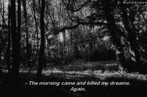 again, dreams, forest, killed dreams, morning, quote, text