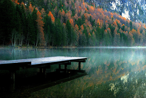 amazing, beautiful, colours, forest, lake, nature, perfect, reflection, water