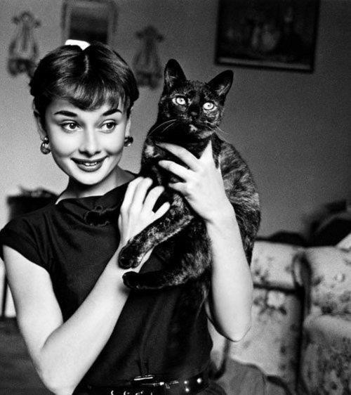animal, audrey hepburn, b&w, beautiful, black&white, cat, eyes, girl, hair, movie, old, photography