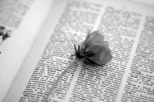 b&w, black and white, book, cute, flower