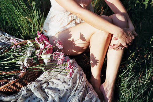 beautiful, beauty, daisy, flowers, girl, legs, nature, perfect, photography
