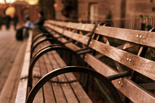 beautiful, bench, cool, nature, vintage