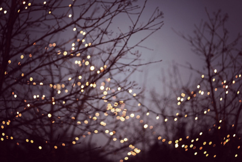 beautiful, christmas, color, colorful, colors, fairy light, fairy lights, fairylight, fairylights, inspiration, inspire, inspiring, light, lights, love, photography, pretty, winter