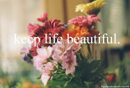 beautiful, flower, flowers, keep, life
