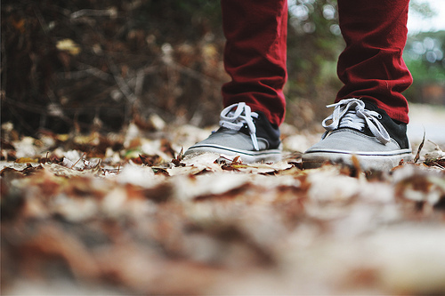 beautiful, nature, nice, photography, same shit, shoes, vans