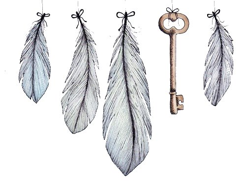 blue, drawing, feather, feathers, illustration, key