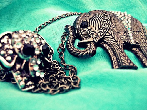 collar, cute, elephant, fashion, girly