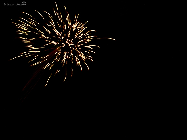 color, explode, firework, light, new year