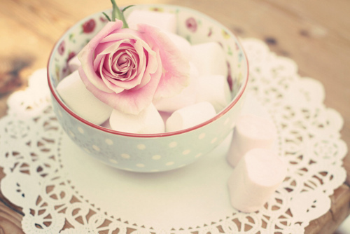 cup, cute, flower, marshmellows, pastel