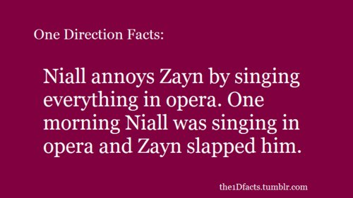 niall horan, one direction, one direction facts, the1dfacts, zayn malik