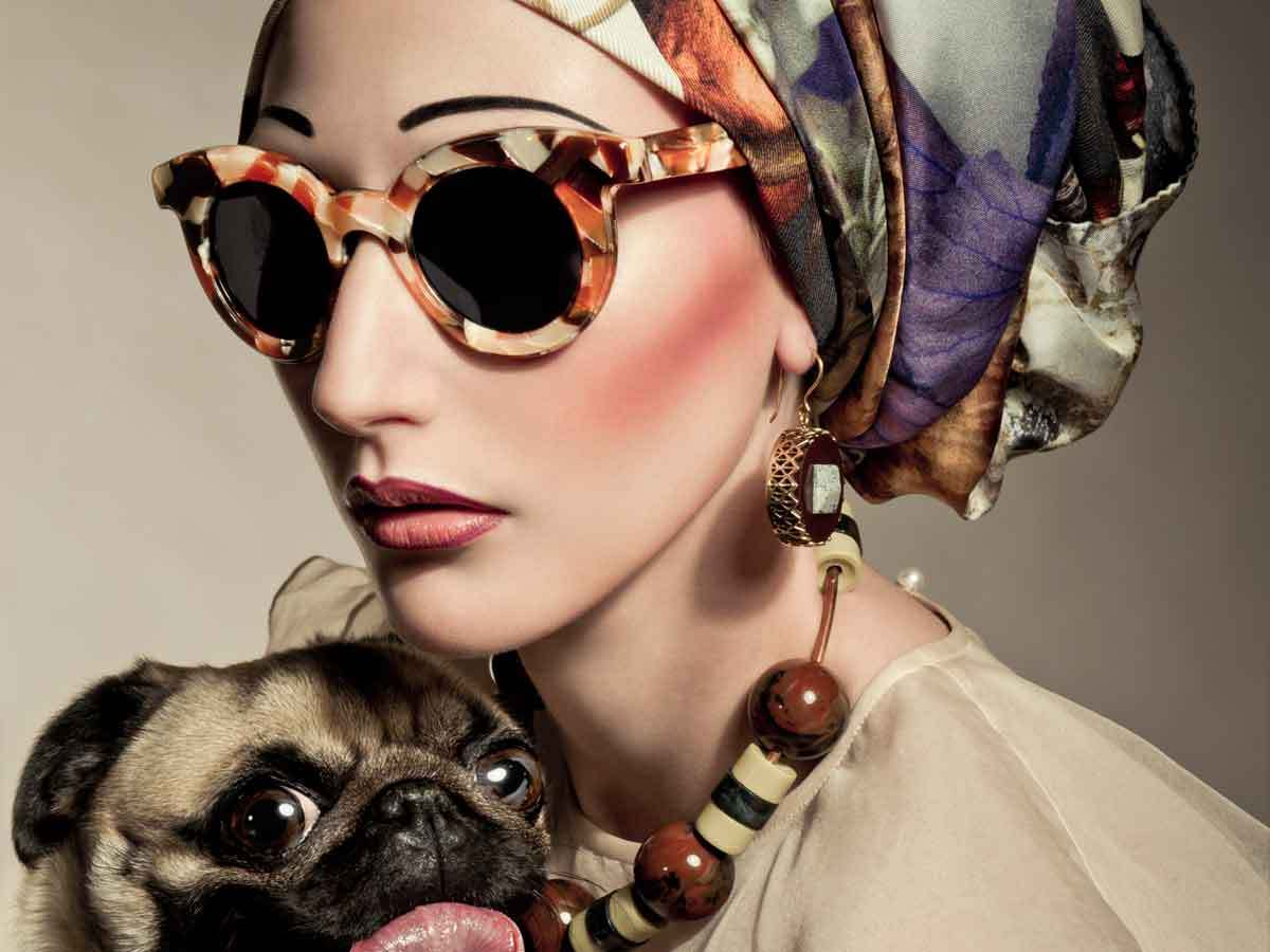 60s, dog, fashion, model, pug