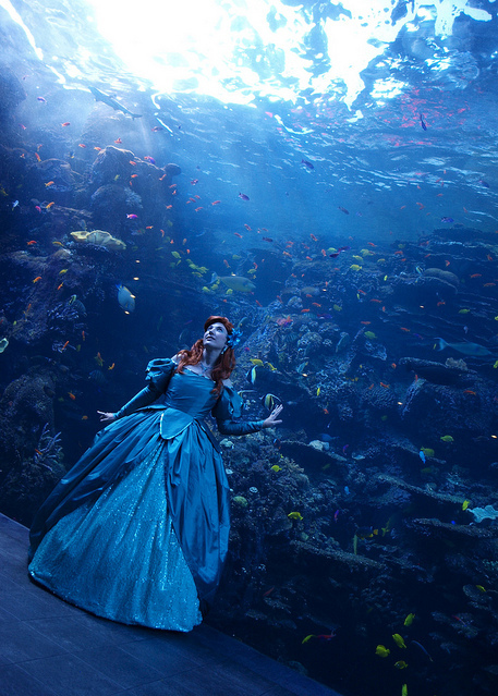 a pequena sereia, aquarium, ariel, beautiful, blue