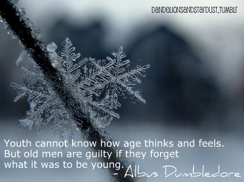 age, albus dumbledore, author, blue, book, cold, dumbledore, frost, guilty, harry potter, men, novel, old, quote, rowling, snow, snowflake, sweet, text, typography, winter, words, young, youth