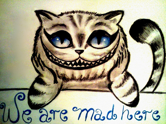alice in wonderland, alice no pais das maravilhas, beautiful, blue, cat
