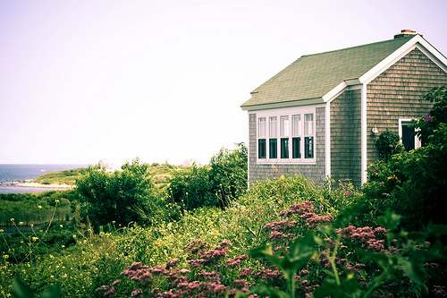 analog, beautiful, film, flowers, green, house, pink, sea, sky