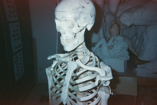analog, bones, boy, cute, grain