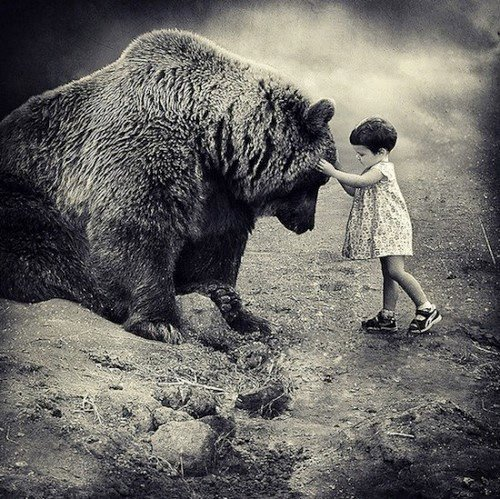 animal, animals, bear, black & white, girl, hug, kid, love